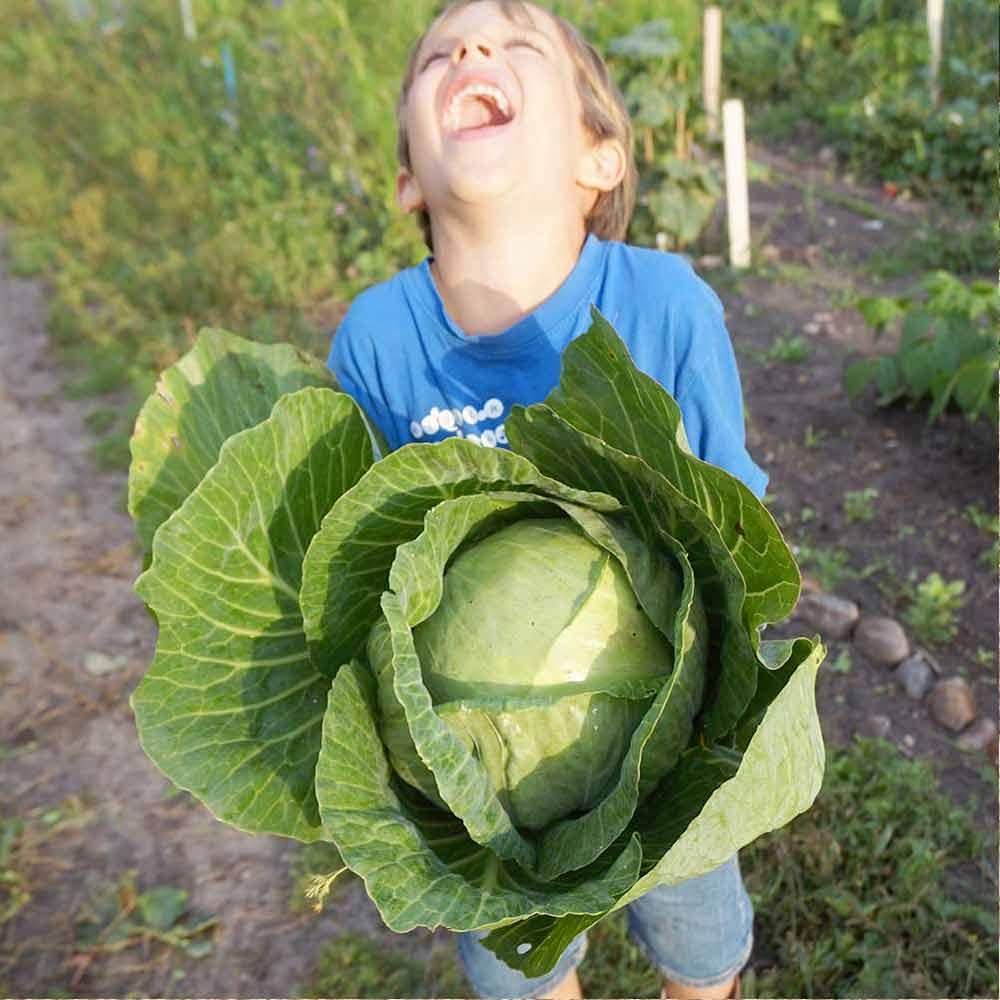 Mein Gemüsegarten / Lilli & Luke